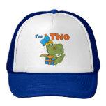 Pequeños 2das camisetas y regalos del cumpleaños d gorras