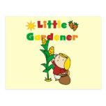 Pequeños camisetas y regalos del jardinero del chi tarjeta postal