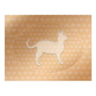 Pequeños corazones minúsculos y gato blanco de tarjetas postales