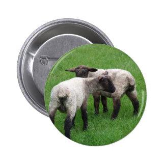 Pequeños corderos gemelos pin redondo de 2 pulgadas