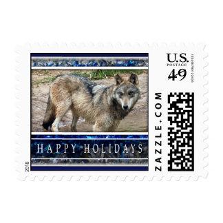 Pequeños lobo gris o sellos del navidad de los lob