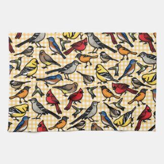 Pequeños pájaros del patio trasero en la guinga am toallas