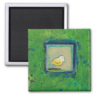 Pequeños pájaros expresivos - todavía aprendiendo  imanes