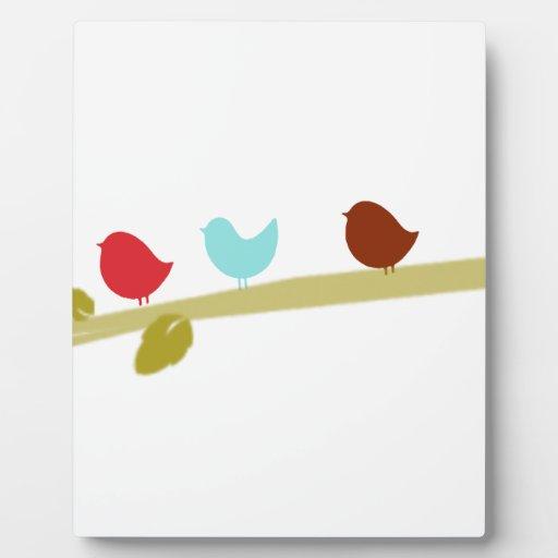 Pequeños pájaros lindos en un miembro placas de plastico