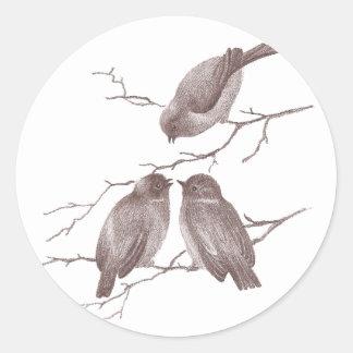 Pequeños pájaros que charlan en una sepia de la pegatina redonda
