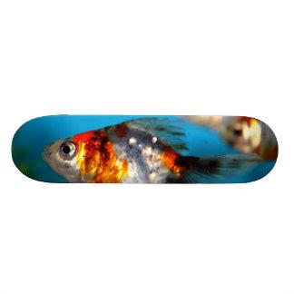 "Pequeños pescados patineta 7 1/8"""