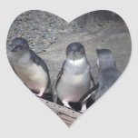 Pequeños pingüinos azules calcomanía de corazón personalizadas