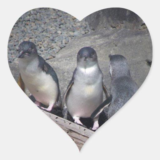 Pequeños pingüinos azules pegatina en forma de corazón