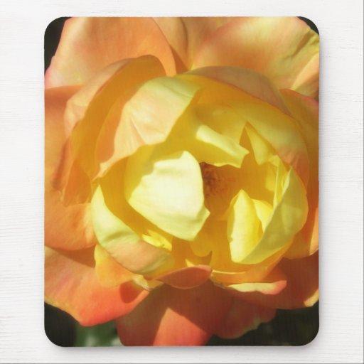 Pequeños rosas naranja-amarillos 1 alfombrillas de raton
