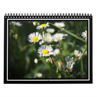 Pequeños Wildflowers blancos Calendarios De Pared