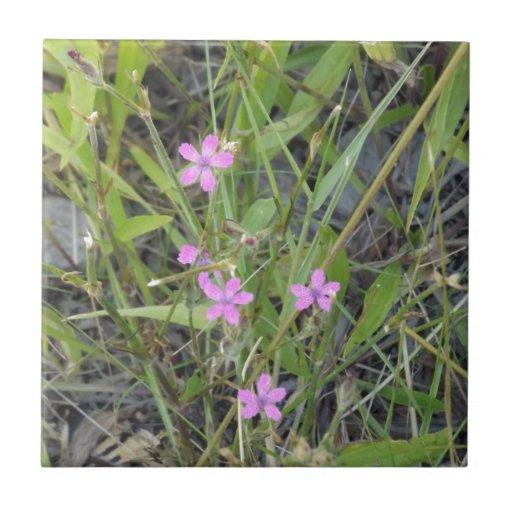 Pequeños Wildflowers rosados Azulejo Cuadrado Pequeño
