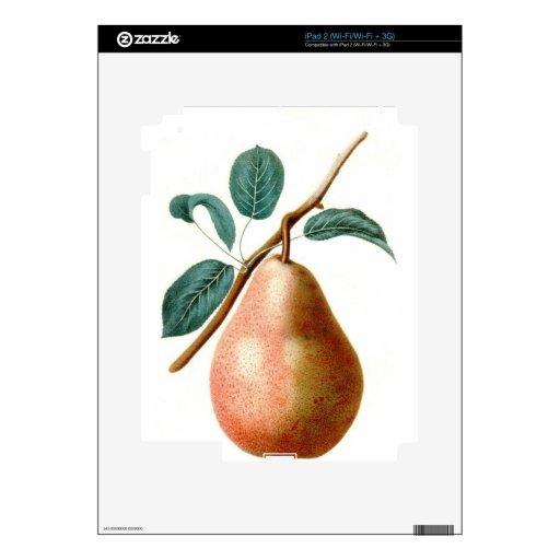 PERA PRECIOSA iPad 2 SKIN