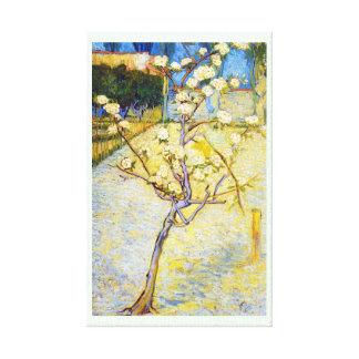 Peral en bella arte de Vincent van Gogh del flor Lona Estirada Galerias