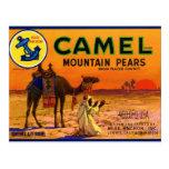 Peras del camello postal