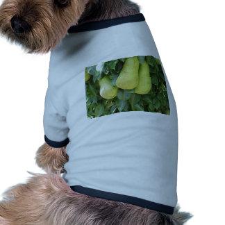 Peras en ramas de árbol camiseta con mangas para perro