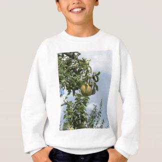 Peras en ramas de árbol sudadera