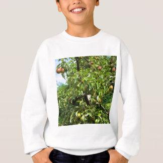 Peras rojas en ramas de árbol sudadera