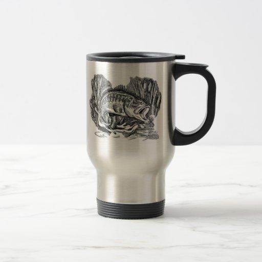 Perca americana joven tazas de café