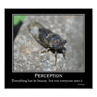 Perception Beauty Cicada Motivational Quote Poster