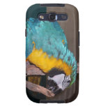 Perch Chewing Macaw Galaxy SIII Covers