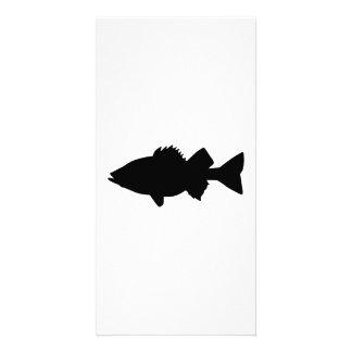 Perch fish custom photo card