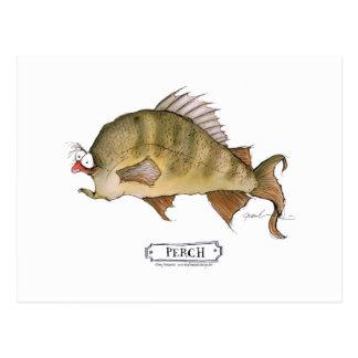 Perch fish, tony fernandes postcard