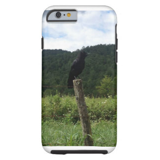 Perched Crow Phone Case