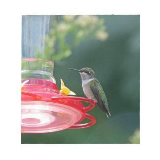 Perched Hummingbird Note Pad