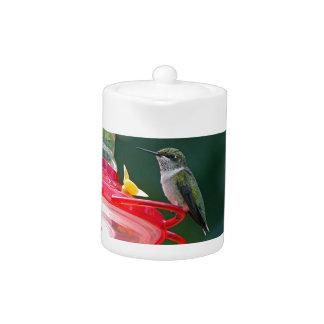 Perched Hummingbird Teapot