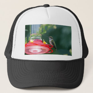 Perched Hummingbird Trucker Hat