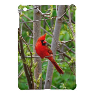 Perched Male Northern Cardinal iPad Mini Cover