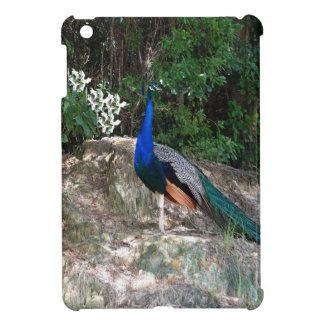 Perched Peacock iPad Mini Cover