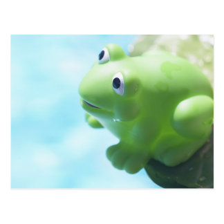 Perched Rubber Frog Postcard