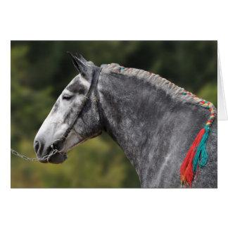 Percheron draft horse birthday card