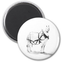 Percheron Draft Horse Equine Art Magnets