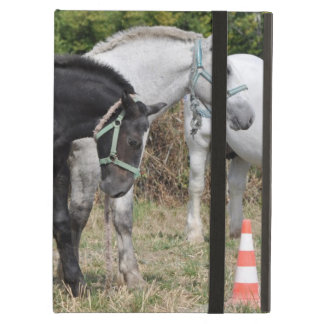 Percheron draft horse foals case for iPad air