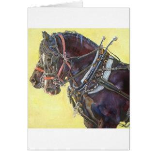 Percheron Draft horse team greeting card
