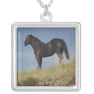 Percheron PMU Horse Necklace
