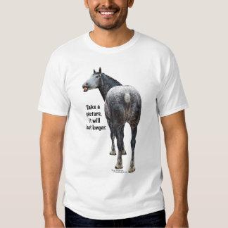 Percheron Take a Picture T Shirt