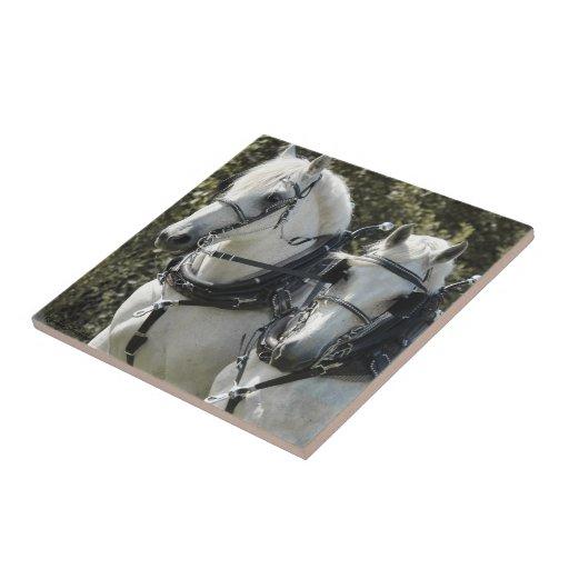 Percheron Team Small Square Tile