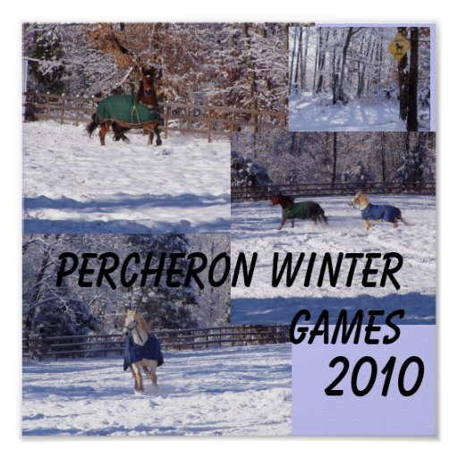 PERCHERON WINTER GAMES, 2013 PRINT
