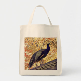 Perching Peacock Tote Bag