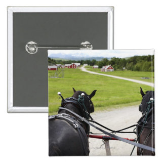 Perchon horses pulling cart  against historic button