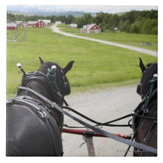 Perchon horses pulling cart  against historic tile