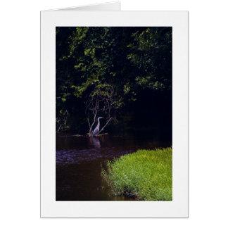 Percival's Isle, Lynchburg Virginia Cards