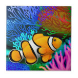 """Percula Clown Anenome Fish Tile<br><div class=""""desc"""">Original fine art painting of a Percula Clownfish by artist Carolyn McFann of Two Purring Cats Studio printed on a quality ceramic tile for tropical coral reef and clown anenome fish fans. See a few of our products below (click to go to that product) and visit our very artistic stores...</div>"""