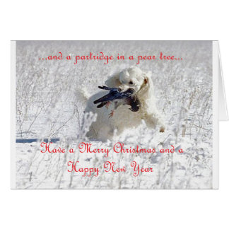 Percy Christmas Card