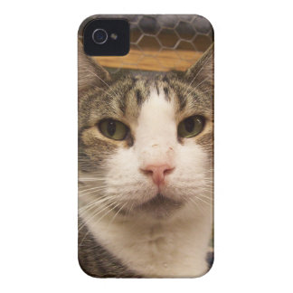Percy iPhone 4 Case