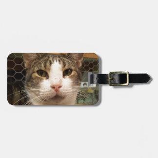 Percy Luggage Tag