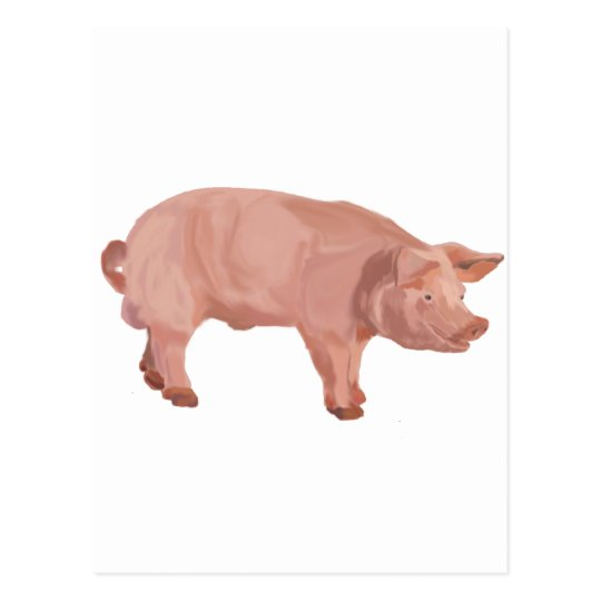 Percy the Pig Postcard